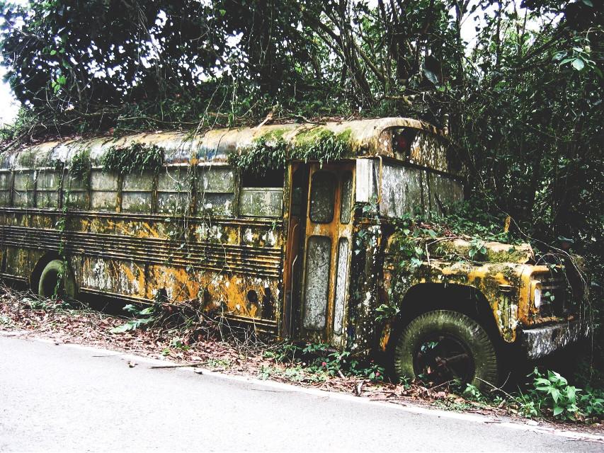#freetoedit #vehicles #schoolbus
