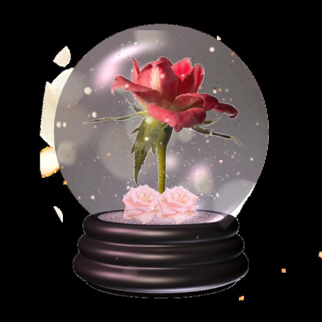 #flower #sticker #rose #globe #pink #red