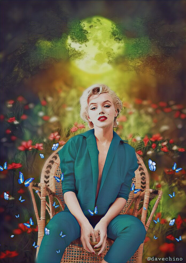 #marylinmonroe inmonroe #flowers #butterfly #colours @freetoedit @picsart #myart #art #myedit