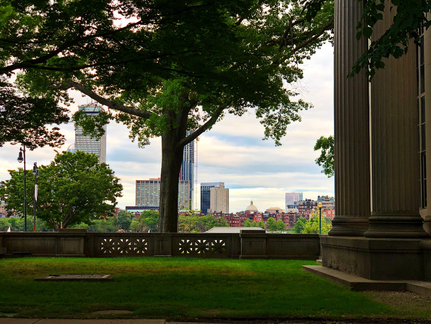 #freetoedit Have a great weekend friends!  #view #architecture #nearandfar #city #columns #likeapainting