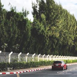 freetoedit red car minicooper tree