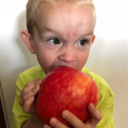 pcfruitselfie fruitselfie