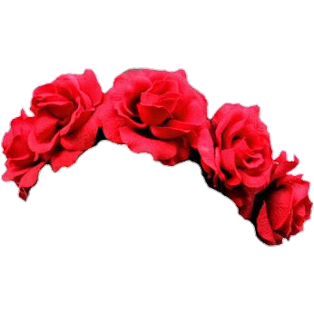 Flowers flower headband flowerband flowercrown overlay flowers flower headband flowerband flowercrown overlay izmirmasajfo