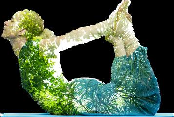 scyoga yoga doubleexposure freetoedit