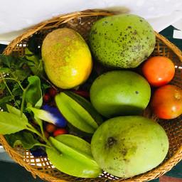 harvest healthyeating