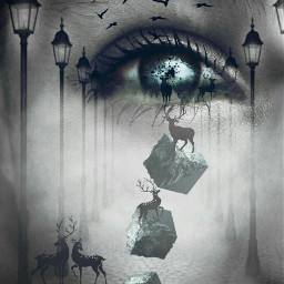 freetoedit highlighteffect fogy levitate eyes ircvivideye