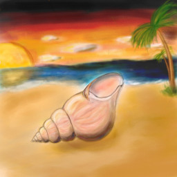 beach beachday atardecer dcbeachday