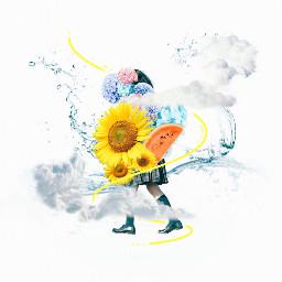 photoshop sunflower summer japan