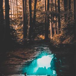 madewithpicsart edited mystical forest dark