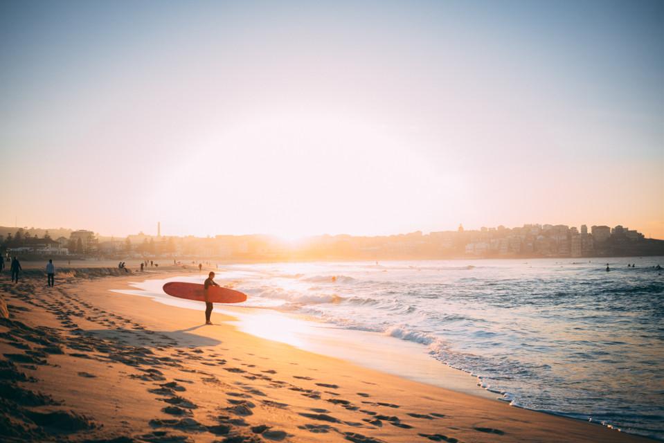 Create something awesome! Unsplash (Public Domain) #freetoedit #board #sunset #sea #surfboard #beach