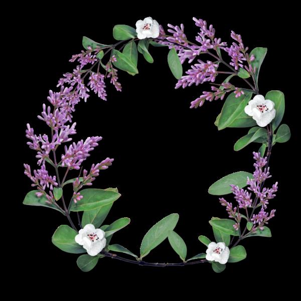 Flower crown cadre circle overlays overlay flower crown cadre circle overlays overlay izmirmasajfo