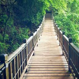 freetoedit pchiking hiking pcbridge bridge pclines pcholidaythrowback
