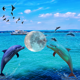 freetoedit dolphin moon waterblue srcwhitemoon