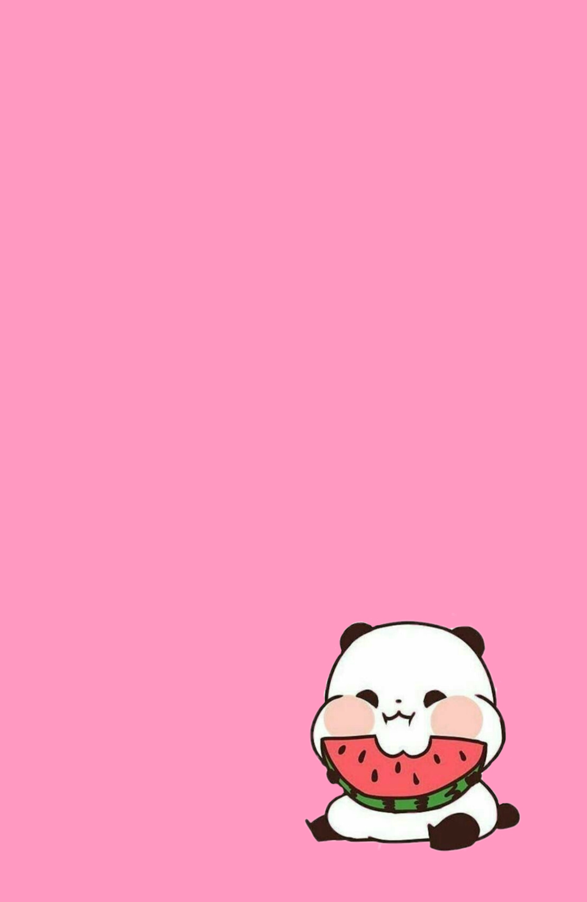 wallpapers heres a cute panda eating a watermelon with
