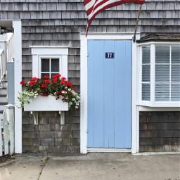 redwhiteandblue windowsanddoors door windowboxes freetoedit pcdoor
