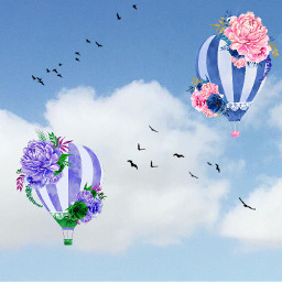 highinthesky birds hotballons freetoedit
