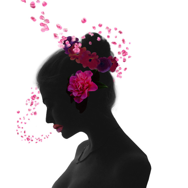 #freetoedit #flowersilhuette