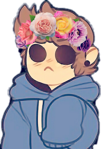ha for some reason i lost this so.. here ya go  #tom #tomeddsworld #eddsworld #eddsworldtom #eddsworldedit #flowercrown