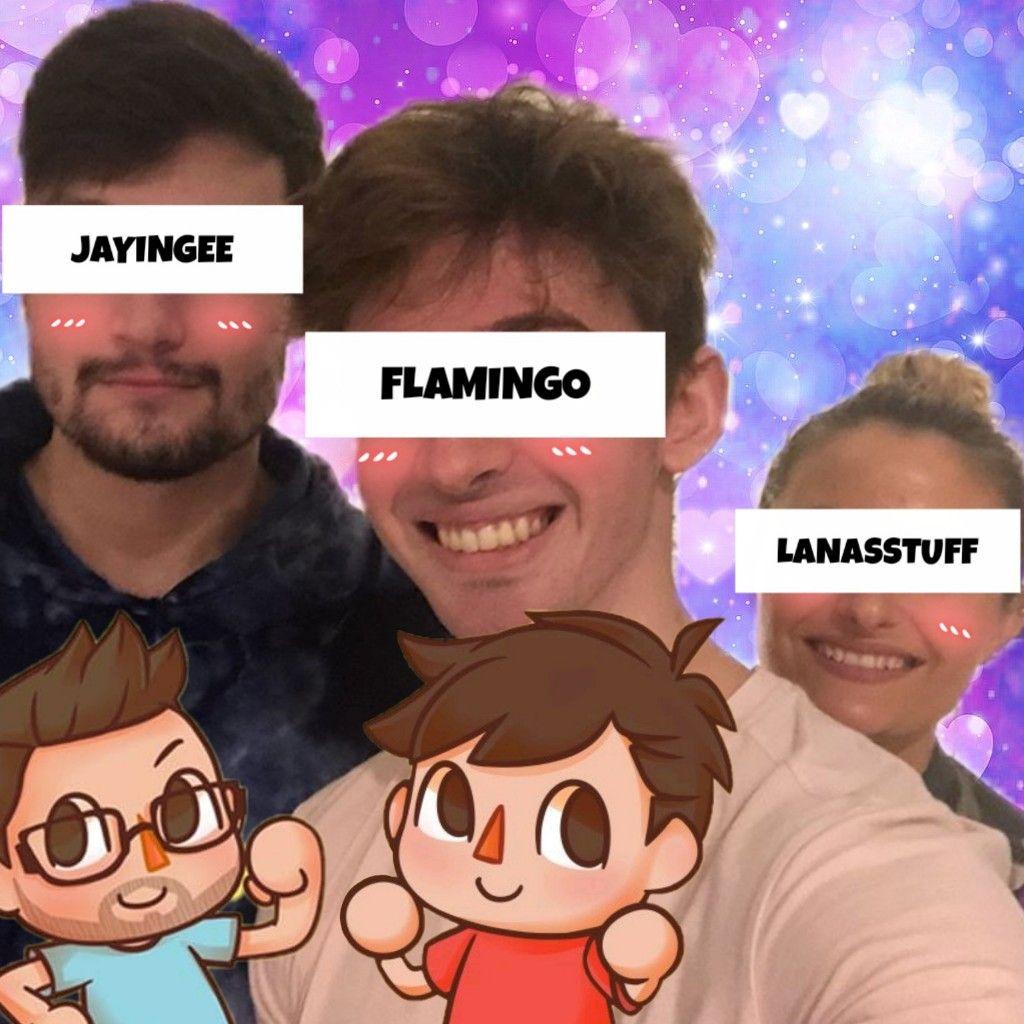 freetoedit albertsstuff lanasstuff flamingo jayingee