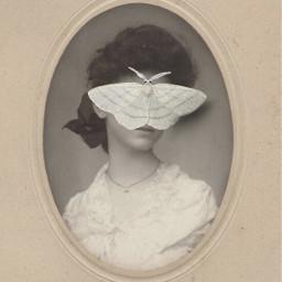 freetoedit collageart collage surreal vintage