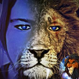 freetoedit animalhybrid lion lionhybrid emo echumananimalhybrid