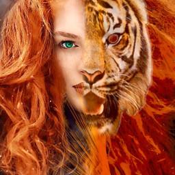 tiger echumananimalhybrid humananimalhybrid lady human freetoedit