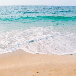 freetoedit nature summervibes beachscenery calmwaves
