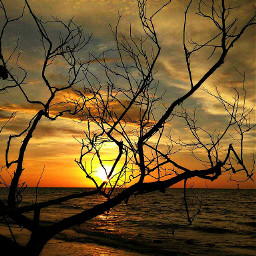 sunset beach nature photography panorama