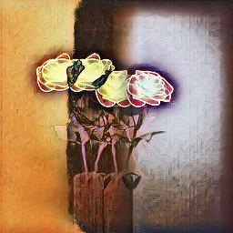 freetoedit flowers stilllife