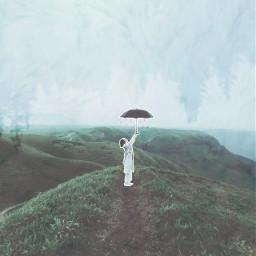 freetoedit ircblackumbrella blackumbrella umbrella forest