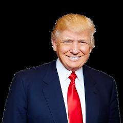 donaldtrump trump president washington thug freetoedit