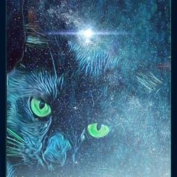 freetoedit starcat nightsky