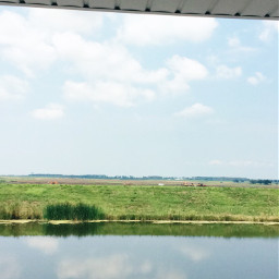 familyreunion louisianascenery swamp diy