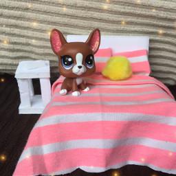 lps craft diy toy dog