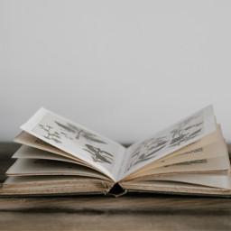 freetoedit book books object objects
