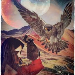 freetoedit falcon falconeering falconeer stormeday ircallinred
