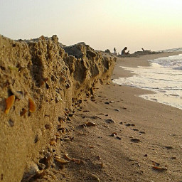 photography sea coast seashells freetoedit