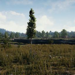 freetoedit field pubg playerunknownsbattlegrounds battleroyale