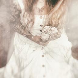 interesting photography fantasy dream roses