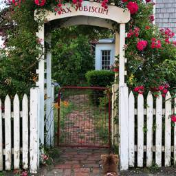 freetoedit pets roses fences gates