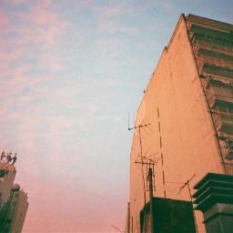freetoedit 35mmfilmphotography analogphotography
