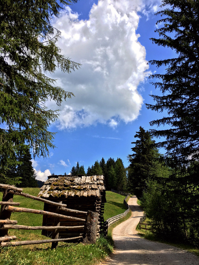 Typical views! 🌲⛰ #italy #dolomiti #beauty #nature #landscape #photography #iphonephotography