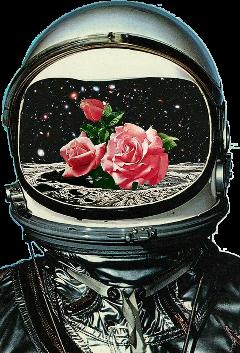astrounut moon rose flower roses freetoedit