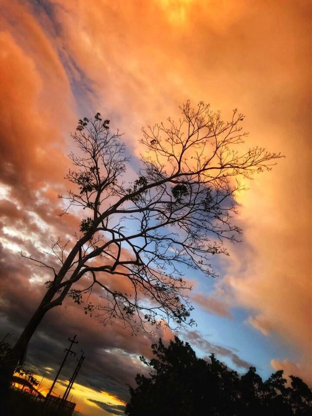 #sky #cielo #atardecer #tumblr #cute #background #fondo