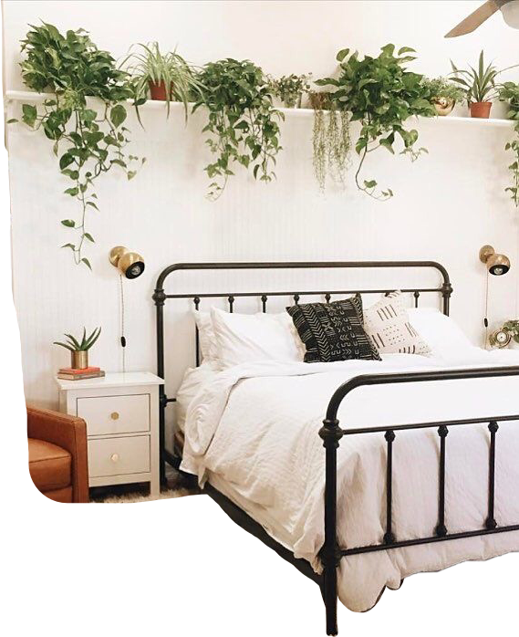 Cute Room Bed Bedroom Plant Plants Tumblr Aesthetic Aes