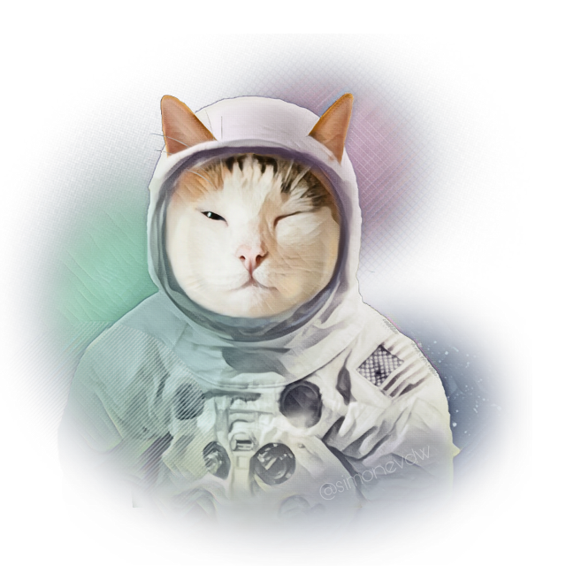 #cat #astronaut