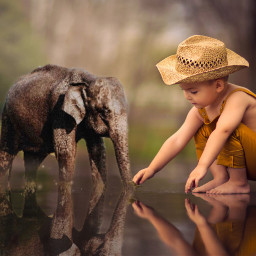 ircelephant elephant freetoedit