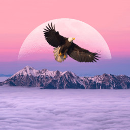 freetoedit eagle moon clouds mountains