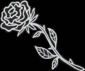freetoedit remixit rose