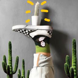 freetoedit monalisa cactus vans outfit